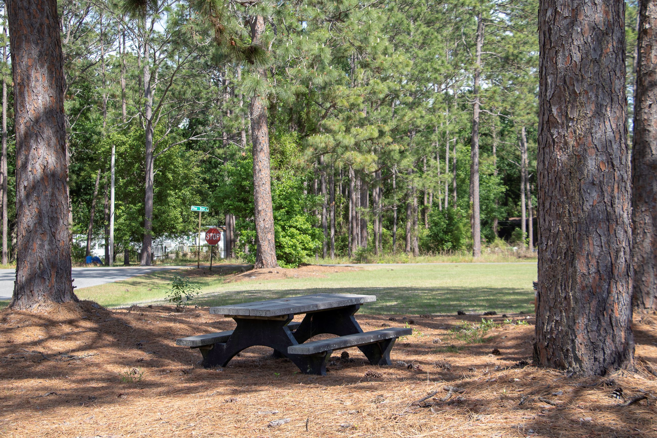 Image of a picnic bench at a park.