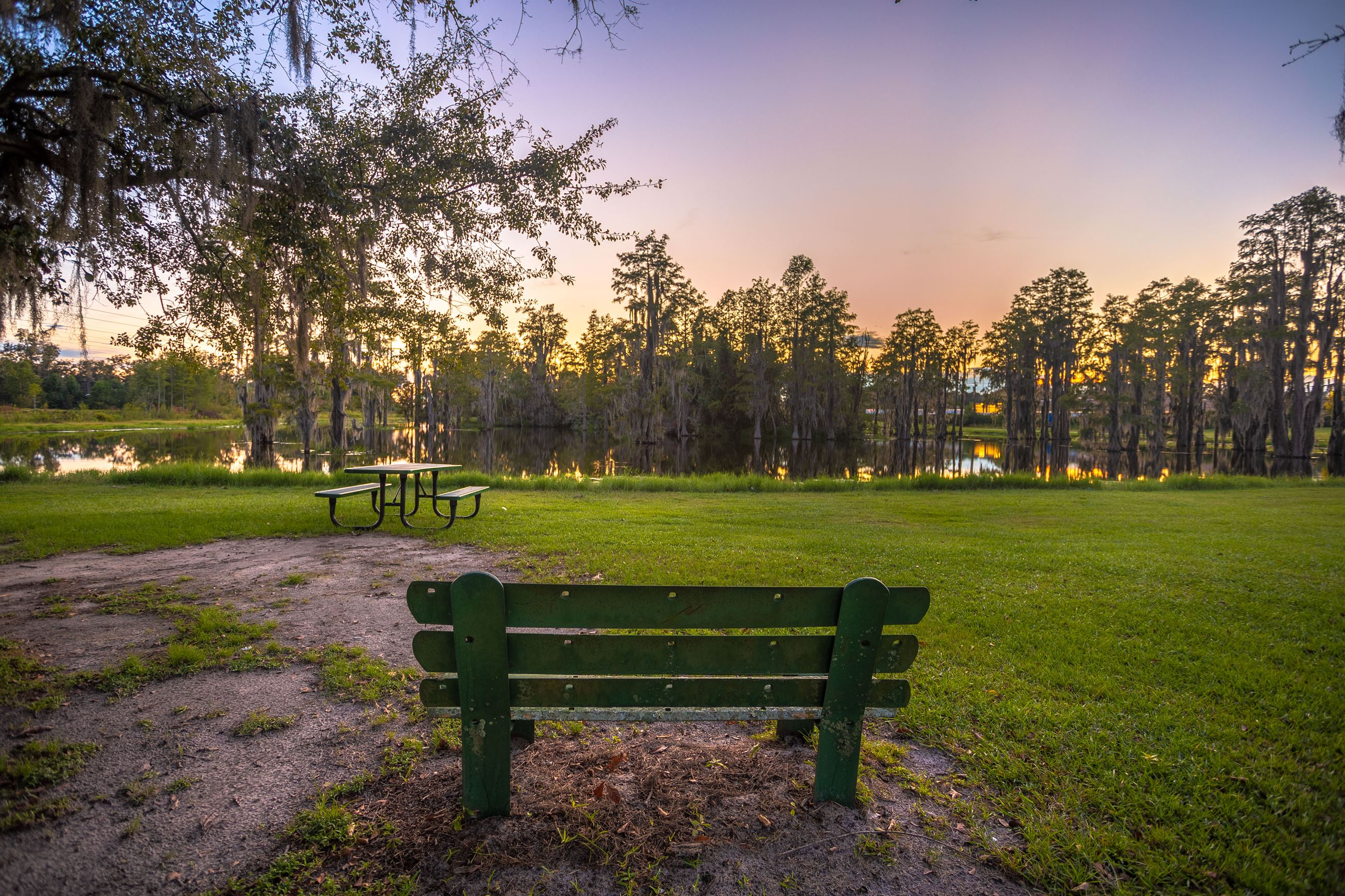 An image of a bench and picnic table in front of a cypress pond at sunset.