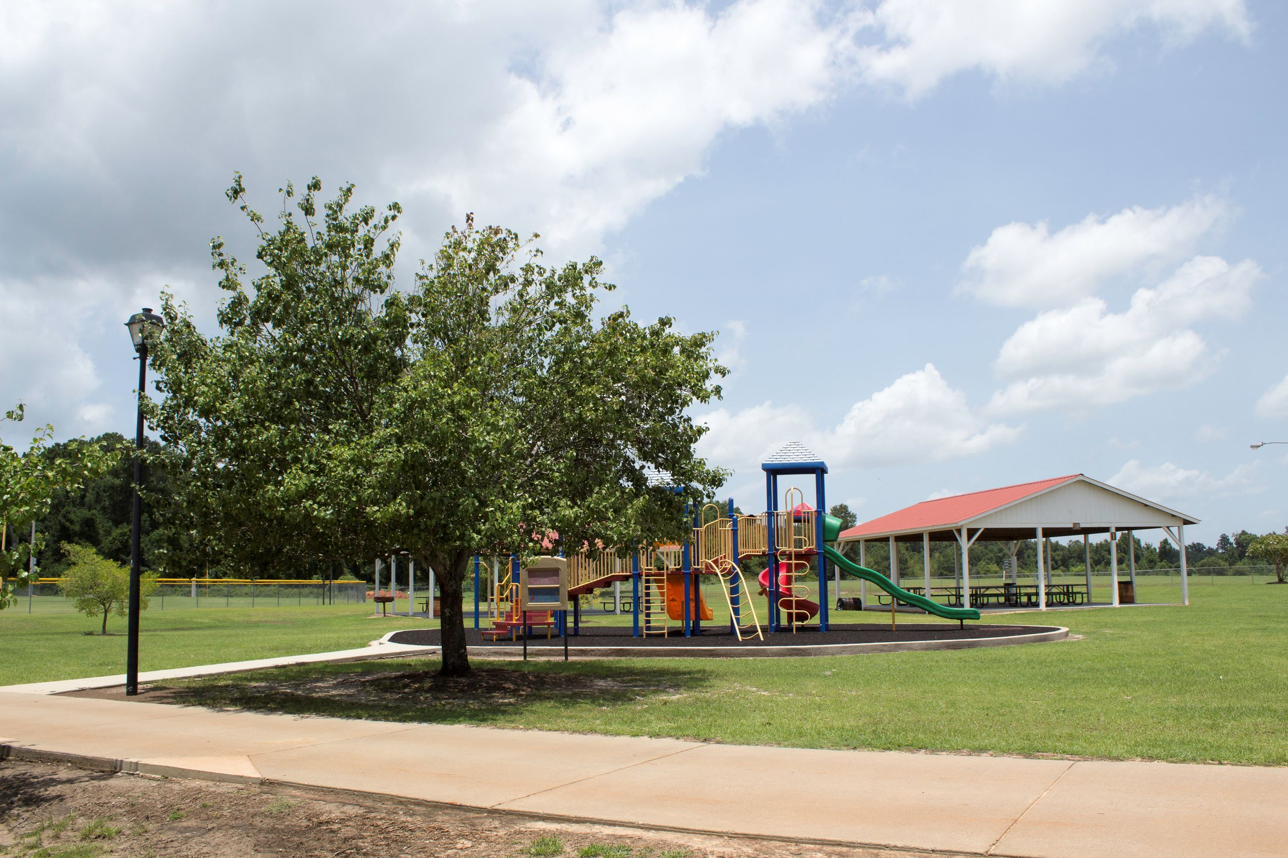 An image of a playground next to a tree in a large park.