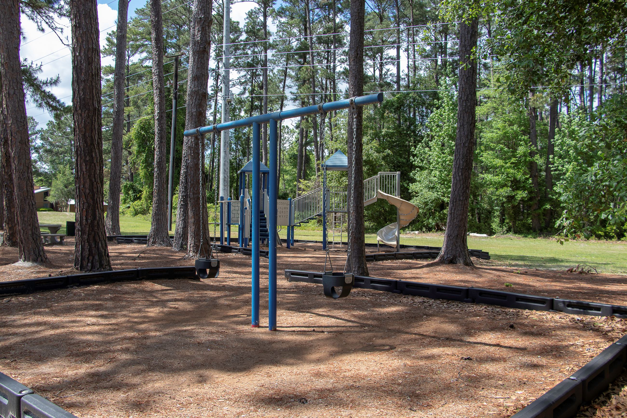 Image of a playground in a park.