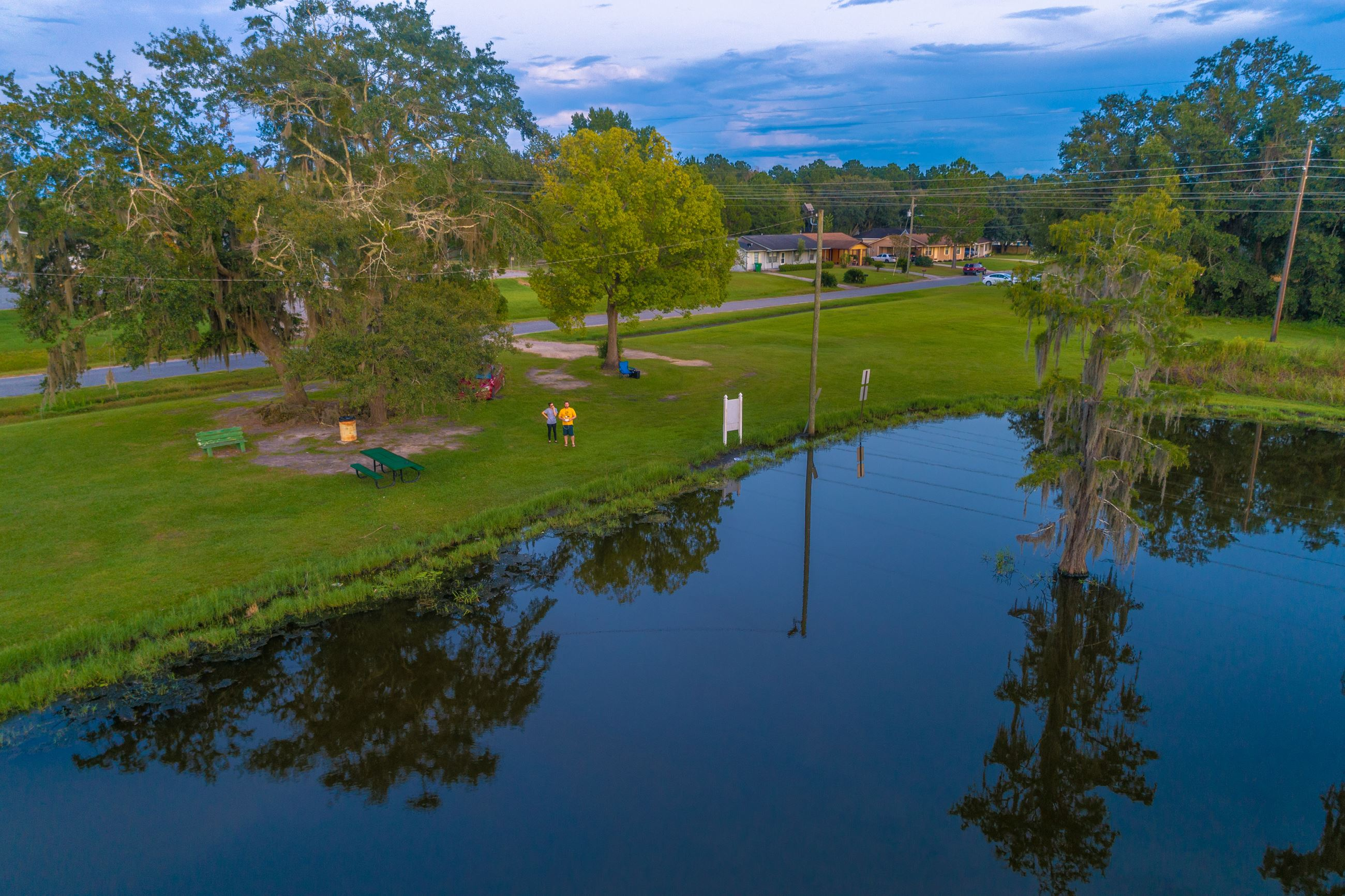 An image of an aerial view of pond with cypress trees at sunset.