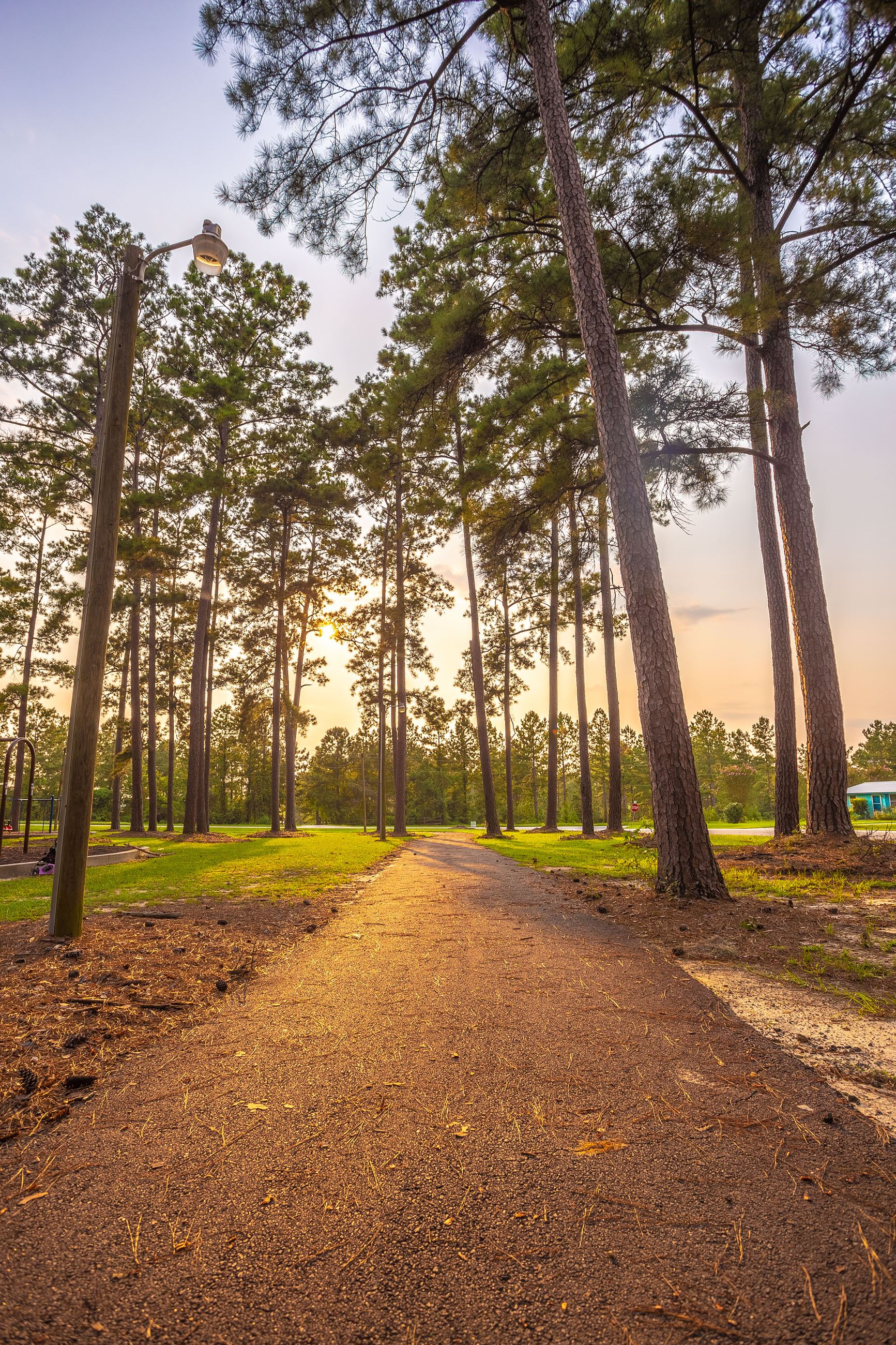 An image of a tree-lined paved walking trail through a park with the sun setting.