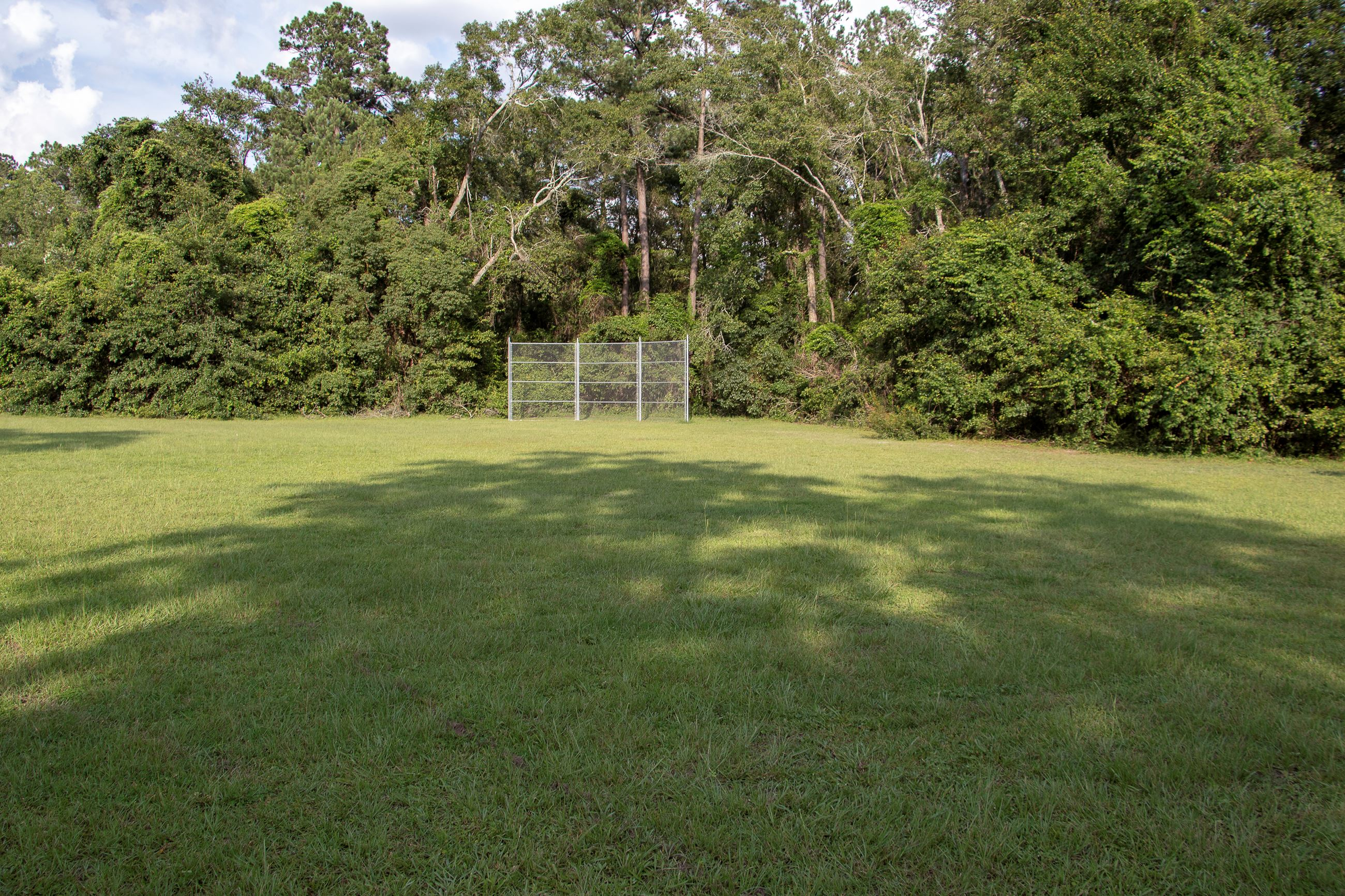 An image of a grassy field with a baseball backstop in the back.